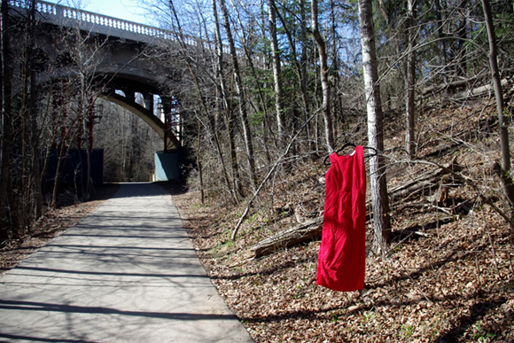 "The inspiration began on January 17, 2015 when there was an amazing full page photograph in the Globe and Mail of a red dress hanging in the woods with the words ""IMAGINE IF 1,181 OF YOUR DAUGHTERS NEVER RETURNED HOME AND IMAGINE IF NO ONE CARED."""